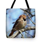 Northern Flicker Woodpecker Tote Bag