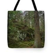 Old Forest In Kauppi Tampere Tote Bag