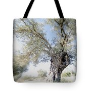 Olive Trees Tote Bag