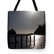 Olympic Peninsula Coast Tote Bag