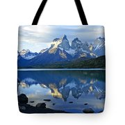Patagonia Reflection Tote Bag