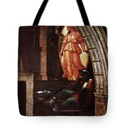 Raphael The Liberation Of St Peter  Tote Bag