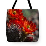 Red Hot Hedgehog  Tote Bag