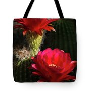 Red Torch Cactus  Tote Bag