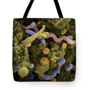 Sem Of Cow Feces Bacteria Tote Bag