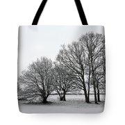 Snow On Epsom Downs Surrey Uk Tote Bag
