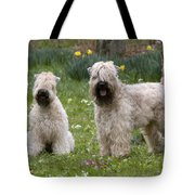 Soft-coated Wheaten Terriers Tote Bag