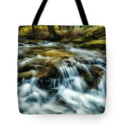 Spring Along Anthony Creek Tote Bag
