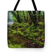 Spring Along Elk River Tote Bag