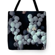 Staphylococcus Saccharolyticus Tote Bag