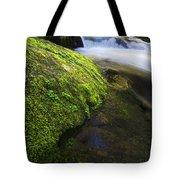 Sweet Creek Oregon 12 Tote Bag
