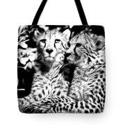 Two Cheetahs Tote Bag