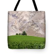 Vines In The Atacama Desert Chile Tote Bag