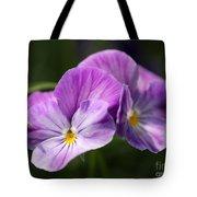 Viola Named Columbine Tote Bag