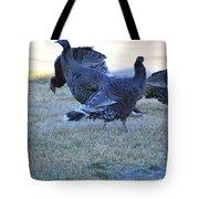 Wild Turkeys. Tote Bag