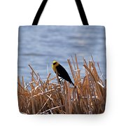 Yellow Headed Blackbird Tote Bag