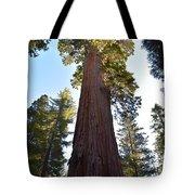 Giant Sequoia Trees Tote Bag