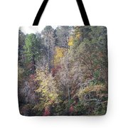 3004-fall 2011 Tote Bag