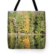 3007-fall Waterscape Tote Bag