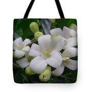 Australia - Gardenia White Flowers Tote Bag