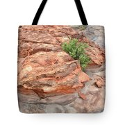 Colorful Sandstone In Valley Of Fire Tote Bag