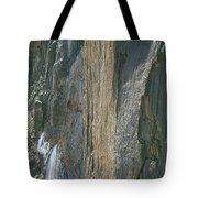 310218-e Face Longs Peak The Diamond Tote Bag