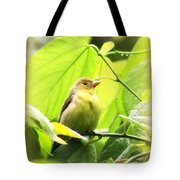 3154 - Tanager Tote Bag