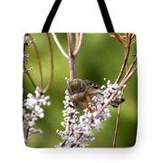 3172 - Warbler Tote Bag