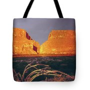 317828 Sunrise On Santa Elena Canyon  Tote Bag