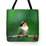 3531 - Ruby-throated Hummingbird Tote Bag