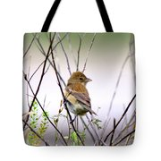 3571 - Tanager Tote Bag