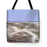 360 Panorama Of Sandy Neck Tote Bag
