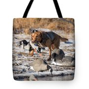 Duck And Goose Hunting Stock Photo Image Tote Bag
