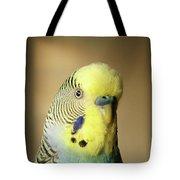 @modelinstagram Tote Bag