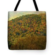 North Carolina Fall Colors Tote Bag