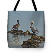 37-  Pelicans Tote Bag