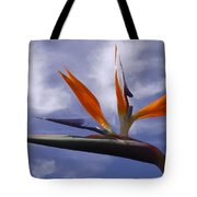 Australia - Bird Of Paradise On Blue Tote Bag