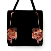 3d Rendering Of Human Digestive System Tote Bag