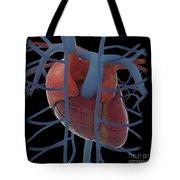 3d Rendering Of Human Heart Tote Bag