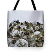 4 And 20 Blackbirds Tote Bag