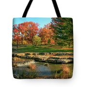Autumn In Forest Park St Louis Missouri Tote Bag
