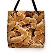 Bacillus Thuringiensis Bacteria Tote Bag