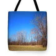 Bare Tree Branches In Early Spring Tote Bag