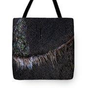 Beach Rams Tote Bag