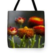Blurred Seasonal Flower With Dark Background Tote Bag