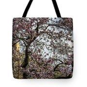 Central Park Spring Tote Bag