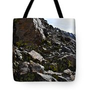 Colorful Lichens Growing On Rocks Along Monument Ridge, In The Eastern Sierra Nevadas Tote Bag