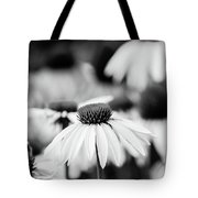 Cone Flowers Tote Bag