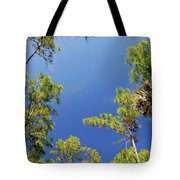 4- Cypress Trees Tote Bag
