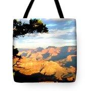 D C Landscape Tote Bag